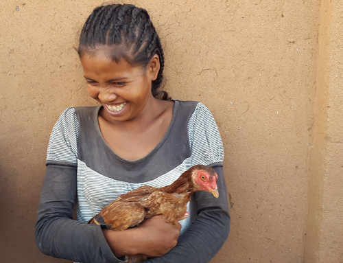 Exciting research to address food insecurity faced by millions in Africa